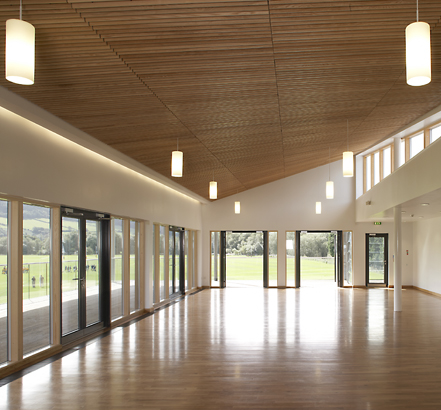 Solid-wood American Ash suspended ceiling