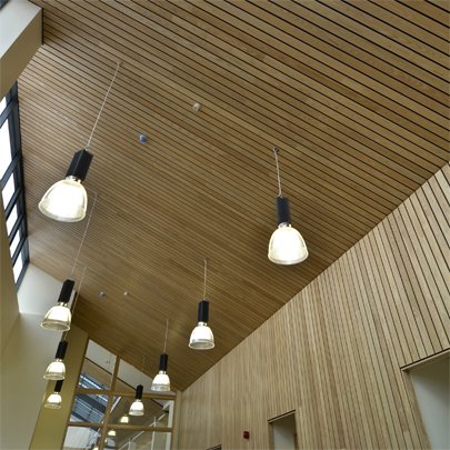 CPD for Hunter Douglas wood ceilings