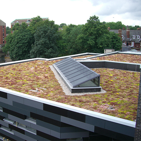 Full Green Roof Pack