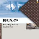 Delta MS Sub Base Protection